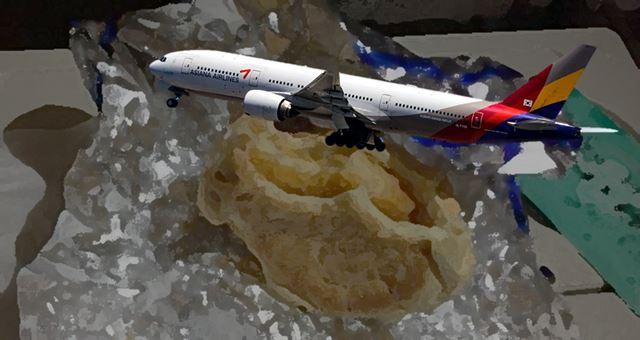 아시아나항공 기내식 대란