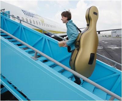 cello_bag.jpg
