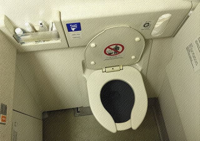 lavatory_airindia.jpg