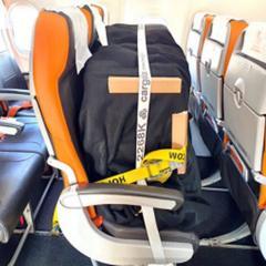 제주항공, 여객기 객실에 화물 싣고 운항 개시 ·· 방콕 첫 비행