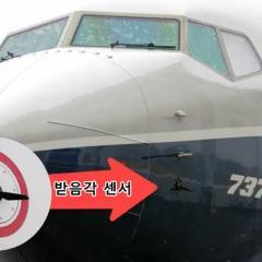 B737 MAX 추락사고 원인 '버드스트라이크' 가능성 제기