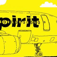 스피리트항공, 미 항공사 중 이익률 최고