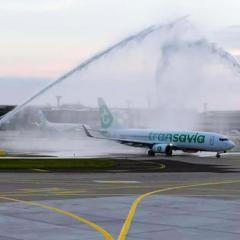 코로나로 닫혔던 파리 오를리공항, 3개월 만에 다시 오픈