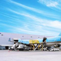 대한항공, '물동량 증가'로 인천공항 외항사 화물터미널까지 사용