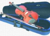 유나이티드, 바이올린 기내반입 거절.. 연주자 손목 부상