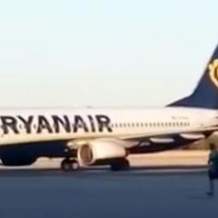 멈춰 서! 비행기 타려 보안지역을 내달린 승객