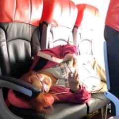무단 업그레이드 하려다 다른 승객에게 욕 바가지로 먹은.. (동영상)