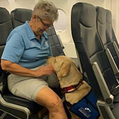 델타항공, 11일부터 정서지원동물 탑승 금지